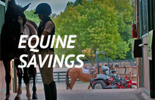 ad-equine-savings